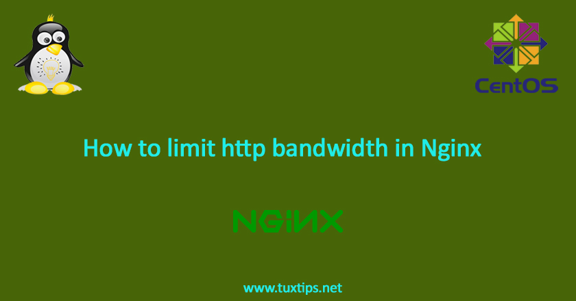 How to limit HTTP bandwidth in Nginx