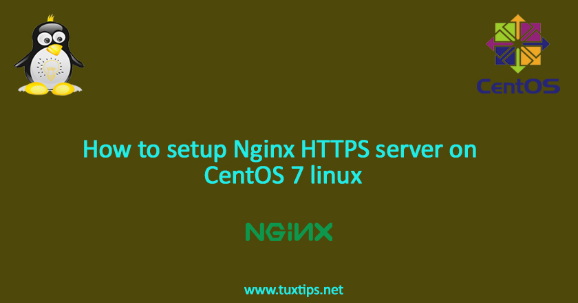 How to setup Nginx HTTPS server on CentOS 7 linux