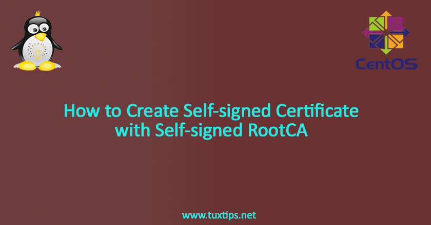 How to create Self-signed Certificate with Self-signed RootCA